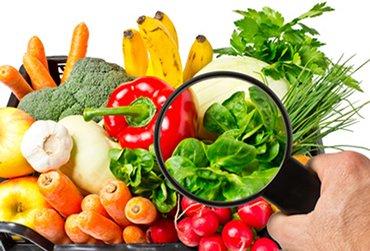 6 Factores claves en la Inocuidad Alimentaria